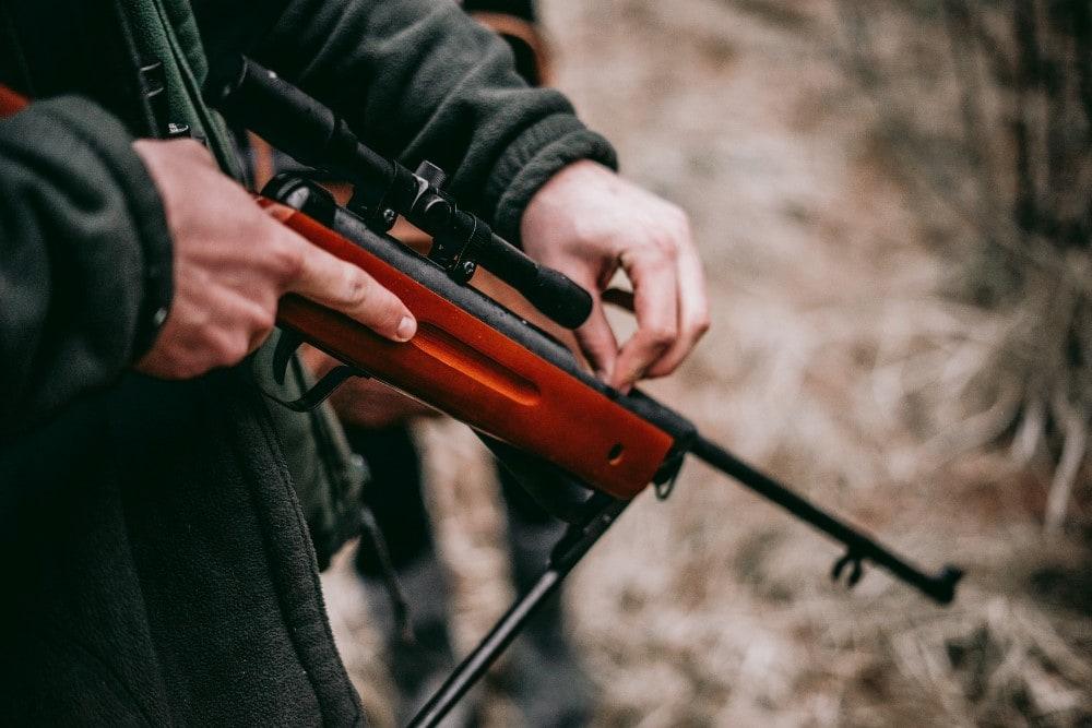 armed radicals