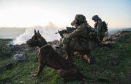 IDF Forces Neutralize Explosives on Syria Border